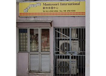 Advanced Montessori International