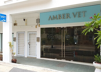 Amber Veterinary Practice Pte. Ltd.