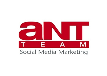 Ant Team Social Media Marketing Pte Ltd