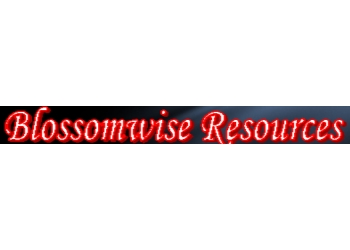Blossomwise Resources Pte Ltd.