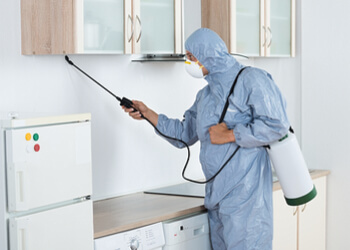 Cleanister Services & Pest Control Pte. Ltd.