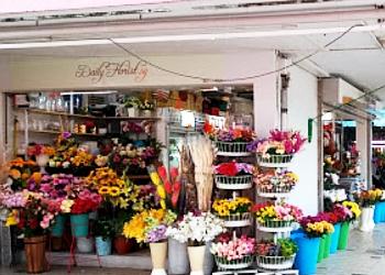 Daily Florist