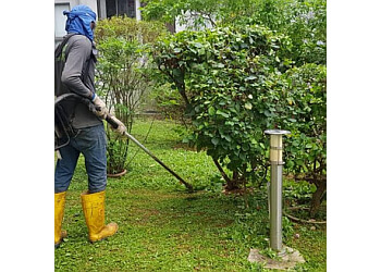 Evergreen Landscape Services