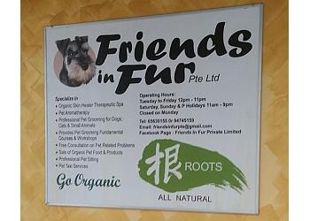 Friends In Fur Pte Ltd.