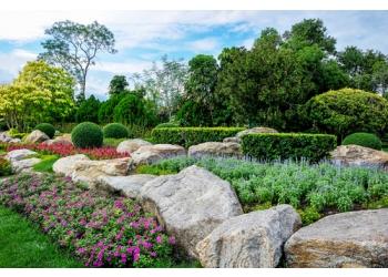 Green-Pine Landscape Flora
