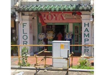 Hoya Flora & Hampers