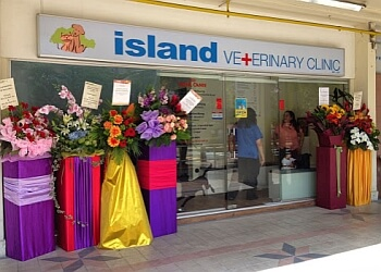 Island Veterinary Clinic