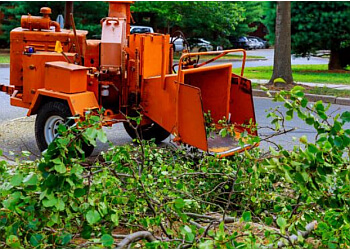 Ken Landscape Services Pte Ltd.