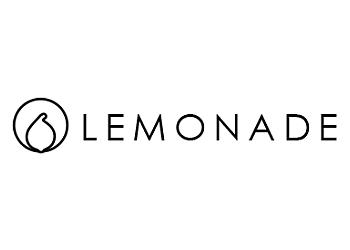 Lemonade IT Solutions Pte Ltd