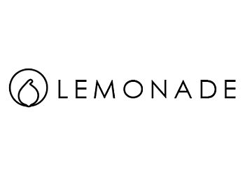Lemonade IT Solutions Pte. Ltd.