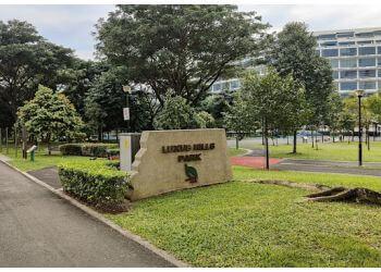 Luxus Hills Park