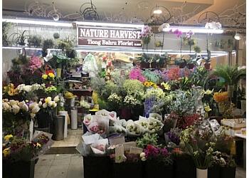 Nature Harvest Floral & Landscape