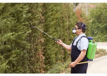 Pesky Pest Control Services LLP