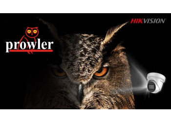 Prowler International Pte. Ltd.