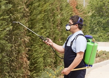 Special Pest Control Services