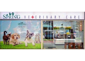 Spring Veterinary Care