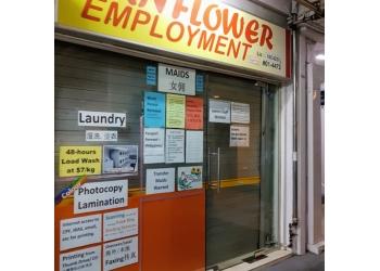 Sunflower Employment Agency