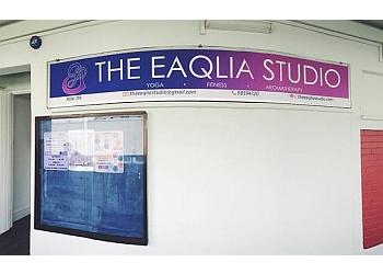The Eaqlia Studio