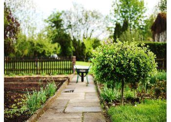 Urban Garden Landscaping