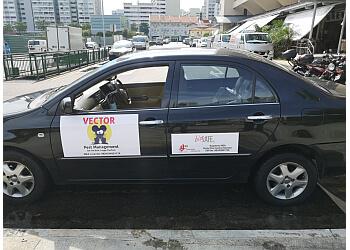 Vector Pest Management